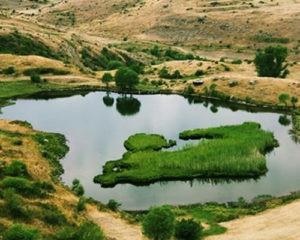 Մարտիրոս լիճ